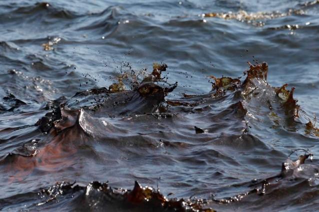 Pier: la rete spaziale che pulisce i mari dal petrolio Minerv Biorecovery