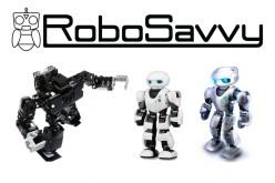 Videointervista a Limor Schweitzer, CEO di RoboSavvy