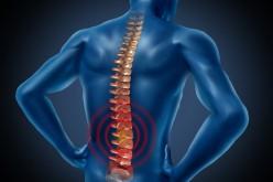 Mal di schiena, un valido aiuto dallo yoga