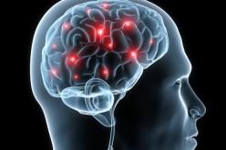 BrainHuRo, un avatar robotico al servizio di pazienti tetraplegici