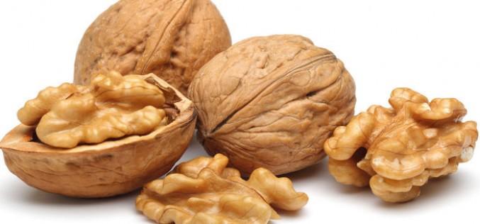 Longevità, il mix vincente è a base di noci, soia e mais