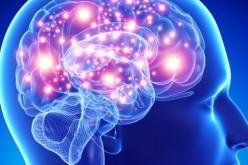 Annabell, il primo cervello artificiale capace di dialogare con l'uomo