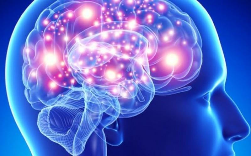 La dieta della memoria, ecco i 12 cibi che aiutano a tenerla allenata