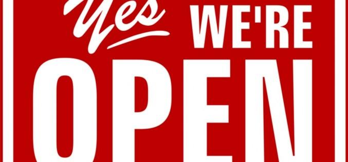 The Open Organization. Come si crea un business di successo?