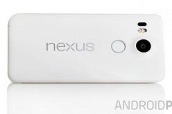 Le prime immagini dei Nexus prodotti da LG e Huawei