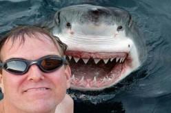 Benvenuti nel 2015: dove i selfie uccidono più degli squali