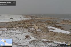Street View mostra gli effetti dei cambiamenti climatici