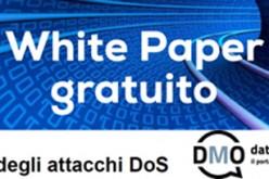 White Paper gratuito: il costo degli attacchi DoS