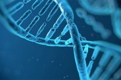 Tumori, tra le cause anche mutazioni casuali del Dna