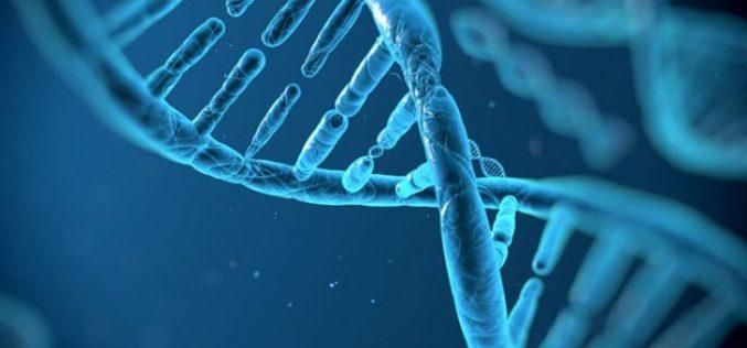 Che se ne fa Microsoft di 10 milioni di sequenze di DNA?