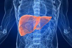 Trapianto di fegato, boom di donatori over 90