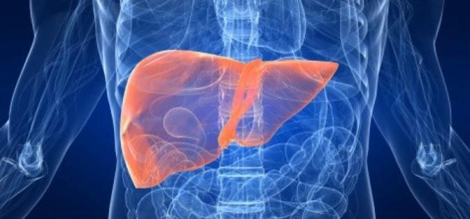 Tumore al fegato, a Verona si testa un vaccino sull'uomo