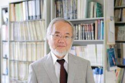 Nobel Medicina al giapponese Ohsumi, che scoprì l'autofagia cellulare