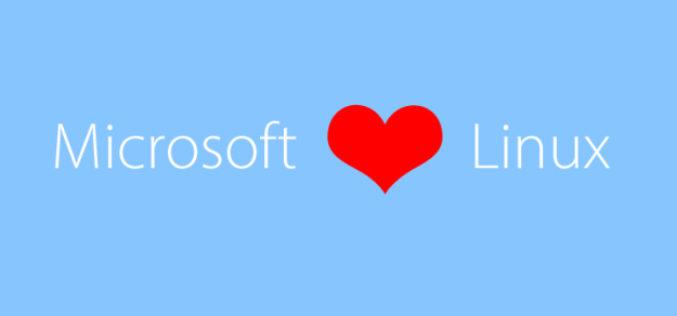 Microsoft entra nella Linux Foundation
