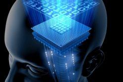 Tecnologie cognitive: cresce l'interesse delle aziende italiane
