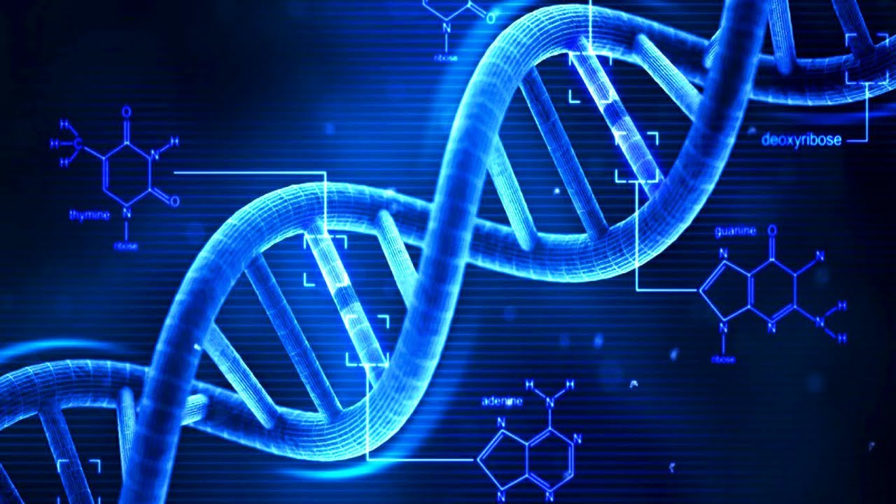 Microsoft ha inserito uno storage in una sequenza DNA crittografata