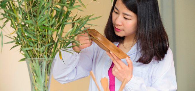 Ford sperimenta l'utilizzo del bambù per la produzione di componenti ecosostenibili ad 'alta resistenza'