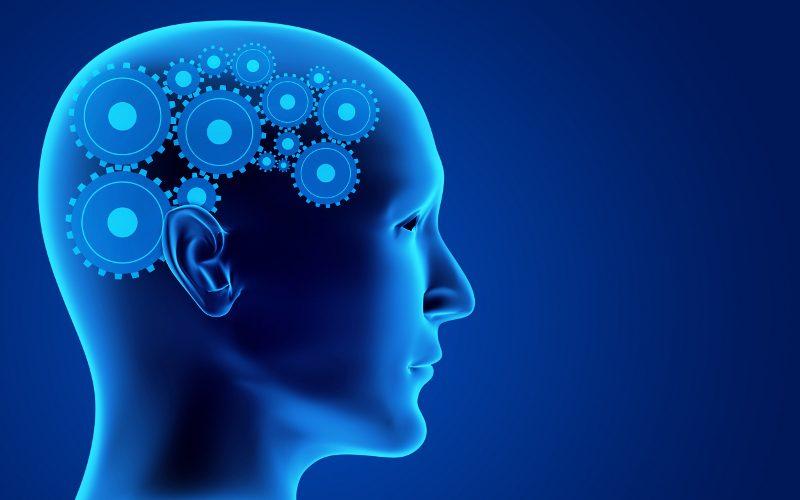 Microsoft forma da sé i talenti nel campo dell'intelligenza artificiale