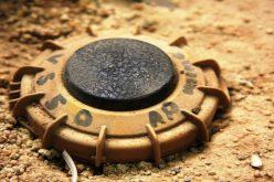 Biologia e tecnologia VS mine anti-uomo