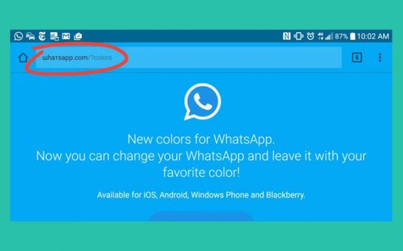 No, non è arrivato WhatsApp a colori