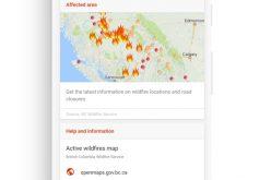 Google fornisce sostengo in situazioni di crisi con Sos Alert