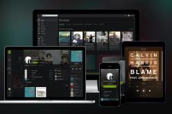 Quanto vale Spotify? 16 milioni di dollari