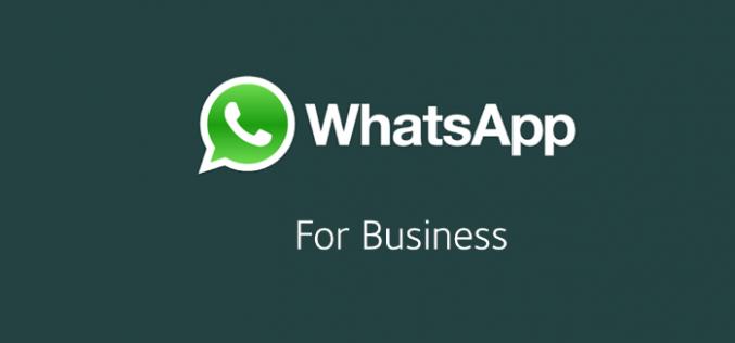 WhatsApp Business è arrivato, ecco come usarlo