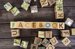 Facebook è il social network preferito dagli imprenditori per condividere le loro nuove idee