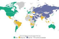 Manipolazione online: almeno 18 votazioni pilotate nel corso degli anni