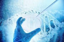 Da GruppoBEI e CDP nasce il primo fondo a sostegno del biotech italiano