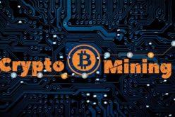 Check Point: scoperta una nuova campagna di cryptomining