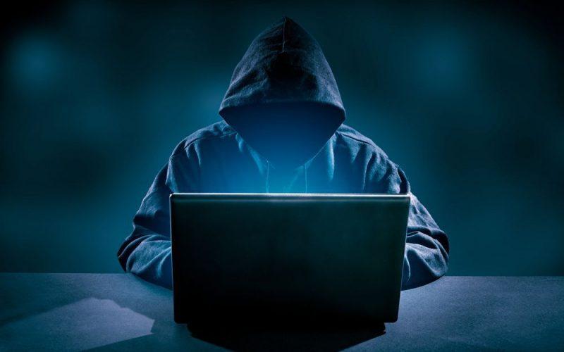 Dopo il cane antidroga arriva quello anti-hacker