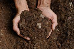 Arsenico nel Salento, metalli pesanti nel terreno di 30 Comuni