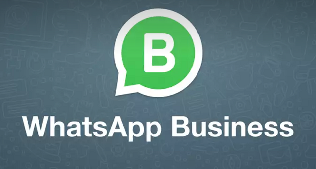 WhatsApp Business arriva su iPhone
