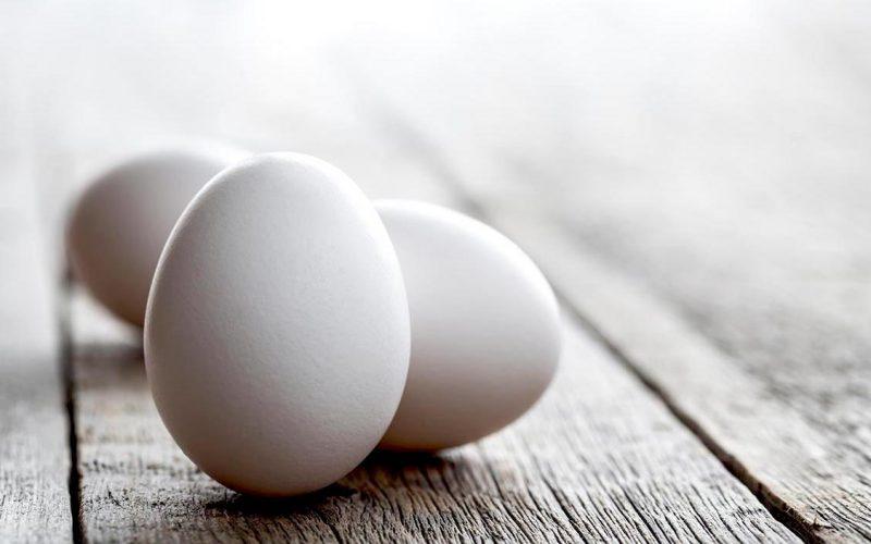 Seeds&Chips, Coop e IBM insieme per innovare la filiera delle uova con Blockchain e AI