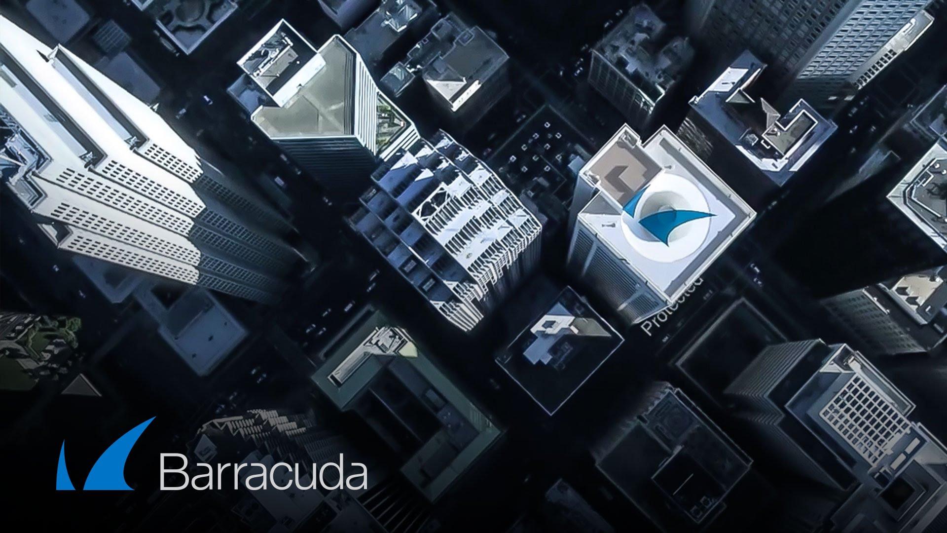 Barracuda cresce e conferma la leadership nelle soluzioni di sicurezza per il cloud