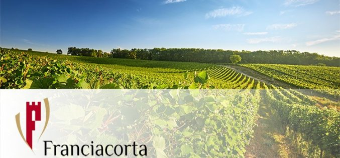 Il Consorzio Franciacorta sceglie Maxidata – Gruppo Zucchetti per l'analisi dei dati di vendita