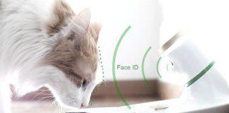 Mookkie, la ciotola intelligente che riconosce l'animale domestico