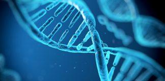 Sanità, algoritmi genetici e investimenti per il futuro