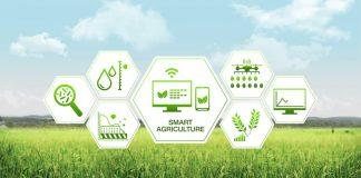 Da Engineering una soluzione per la Smart Agriculture