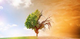 Qlik lancia Datathon, per trovare soluzioni data-driven per la resilienza climatica