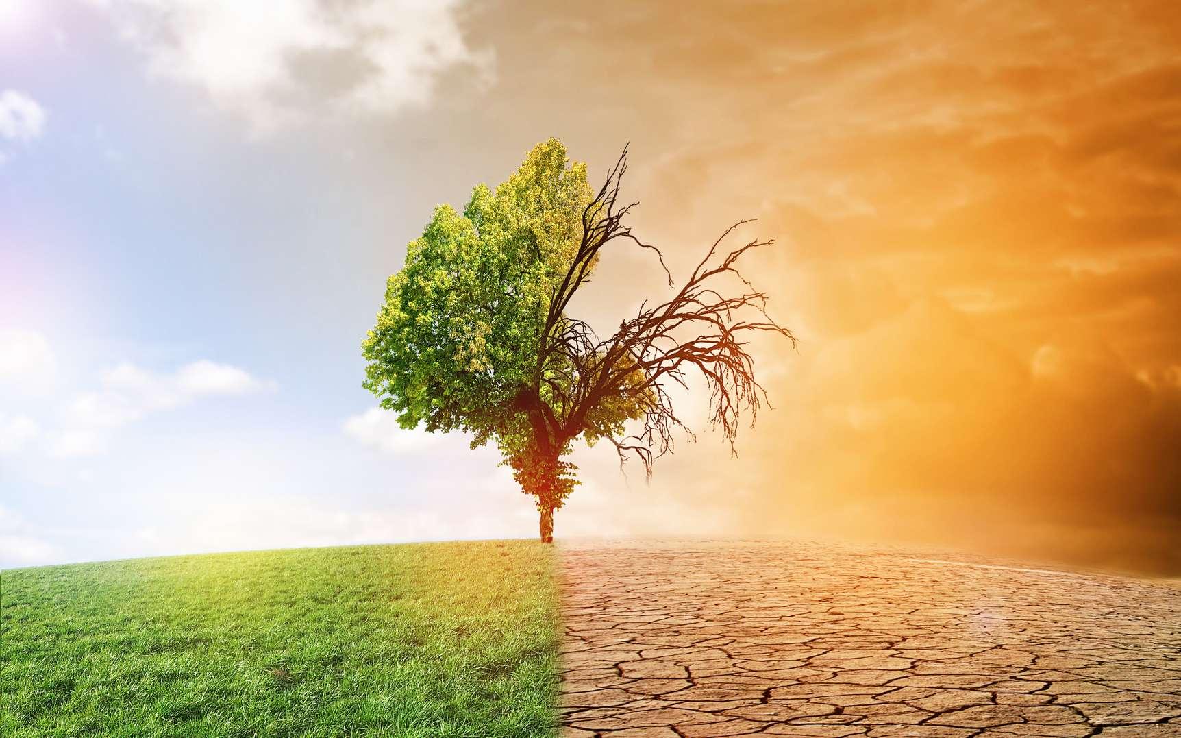 Cambiamento climatico. La prossima sfida per l'ICT