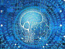 Il primo algoritmo di IA per la progettazione automatica di reti neurali per la classificazione delle immagini nei dispositivi IoT