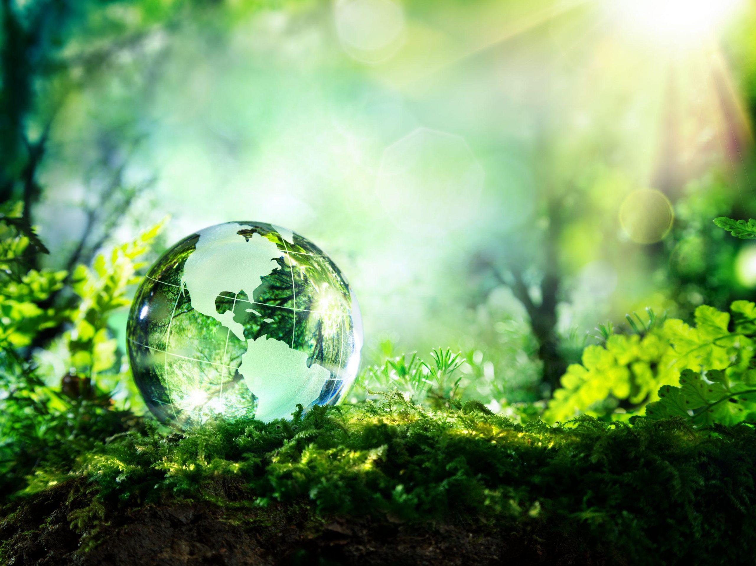 Italiani sempre più attenti alla sostenibilità