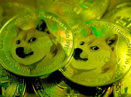 Cos'è Dogecoin, la moneta su cui scommette Elon Musk