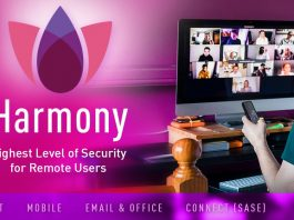 Lavoro a distanza: Check Point Software lancia Harmony