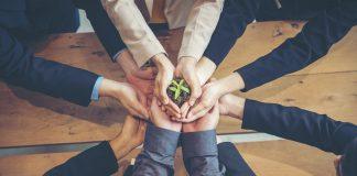 Al via la nuova piattaforma di Greenpeace sviluppata da Minsait e Softfobia