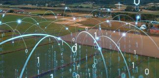 L'innovazione in campo. L'agroalimentare si trasforma