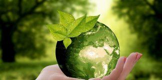 Schneider Electric comunica i suoi impegni per combattere la perdita di biodiversità